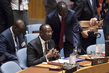 Security Council Considers Joint Force of Sahel G5 0.6764048
