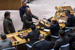 Security Council, General Assembly Continue Elections for Fifth Vacancy on World Court 0.17595108