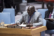 Security Council Extends Mandate of UN Interim Force for Abyei 4.0662985