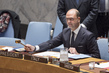 Security Council Considers Situation in Libya 4.0662117