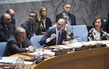Security Council Considers Security Challenges in Mediterranean