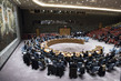 Security Council Fails to Adopt Resolution on Investigative Mechanism in Syria 0.041560233