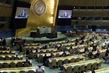 General Assembly Meets on Question of Palestine 0.9242841