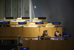 General Assembly Meets on Question of Palestine 8.274048