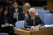 Security Council Considers Situation in Sudan and South Sudan 0.019603271