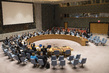 Security Council Adopts Resolution on the Great Lakes Region 4.0581446