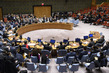 Security Council Votes to Include Briefing on Humanitarian Situation in DPRK on Its Agenda 4.0581446