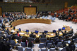 Security Council Votes to Include Briefing on Humanitarian Situation in DPRK on Its Agenda 0.06461363