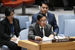 Security Council Considers Situation in Myanmar 1.0