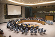 Security Council Renews Mandate of UNDOF 0.09946276
