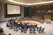 Security Council Renews Mandate of UNDOF 0.09949711