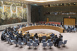 Security Council Considers Situation in Democratic Republic of Congo 1.0