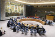 Security Council Considers Situation in Colombia 1.0