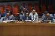 Security Council Considers Situation in Darfur, Sudan 1.4653261