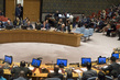 Security Council Meeting on Situation in Middle East 0.5336357