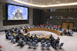 Security Council Considers Developments in Kosovo 1.0