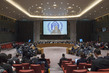 Security Council Considers Situation in Myanmar 0.009410038