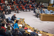 Security Council Considers Situation in Syria 0.006653902