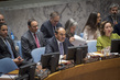 Security Council Considers Situation in Syria 0.0058185305