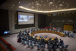 Security Council Considers the Situation in Central African Republic 1.0