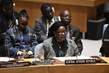 Security Council Considers the Situation in Central African Republic