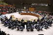 Security Council Considers Situation in Syria 0.13423708