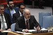 Security Council Considers Situation in Syria 0.08768329