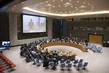 Security Council Considers Situation in Syria 4.0392427