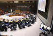 Security Council Considers Situation in Syria 4.0387516