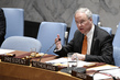 Security Council Considers Situation in Democratic Republic of the Congo
