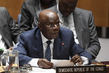 Security Council Considers Situation in Democratic Republic of the Congo 2.8421578