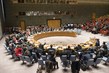 Security Council Votes on Provisional Agenda to Hold Meeting on Syria 4.0387516