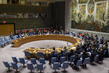 Security Council Votes on Provisional Agenda to Hold Meeting on Syria