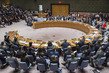 Security Council Fails to Adopt Draft Resolutions on Syria 1.0443337