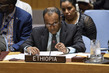 Security Council Considers Threats to Peace and Security, Situation in the Middle East 4.0158644
