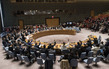 Security Council Extends Mandate of UN Interim Force for Abyei