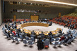Security Council Considers Situation in the Middle East