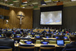 Meeting of Ad Hoc Working Group on General Assembly Revitalization 3.2306228