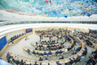 Human Rights Council Special Session on Palestine 4.617563