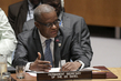 Security Council Considers Joint Force of Sahel G5 1.0
