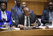 Security Council Considers Situation in Burundi