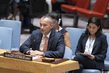 Security Council Considers Situation in Middle East, Including Palestinian Question 0.53276944