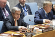 Security Council Consider Maintenance of International Peace and Security 12.32297