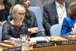 Security Council Considers Climate-Related Security Risks 3.9954996