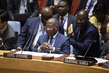 Security Council Considers Situation in Central African Republic 3.9954996