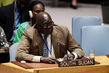 Security Council Cosider Situation in Sudan and South Sudan 3.9954996