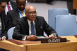 Security Council Cosider Situation in Sudan and South Sudan