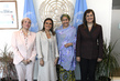 Deputy Secretary-General Meets Ministerial Delegation from Egypt 7.2013726