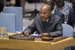Security Council Considers Peace Consolidation in West Africa 3.9954996