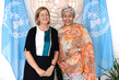 Deputy Secretary-General Meets Vice-Minister of Foreign Affairs Netherlands